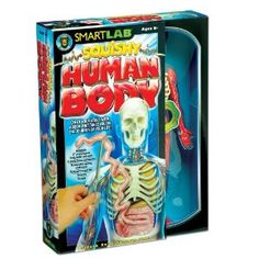 All- Amazon.com : SmartLab Toys Squishy Human Body : Science Kits : Toys & Games