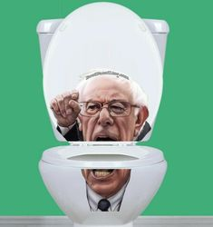 High quality, US made, vinyl toilet lid sticker. Be sure to view our other characters from Bowl Faced Liar. They make great gifts! Poop Jokes, Bernie Sanders, Toilet, Great Gifts, Decals, Stickers, Character, Ebay, Flush Toilet