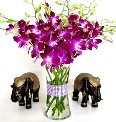 Fresh Flowers – Purple Dendrobium Orchids with Vase - See more at: http://grocery.florenttb.com/grocery-gourmet-food/fresh-flowers-live-indoor-plants/fresh-flowers-purple-dendrobium-orchids-with-vase-com/