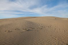 Great Sand Hills, Saskatchewan All About Canada, Saskatchewan Canada, Cypress Hill, Canada 150, The Province, The Great Outdoors, Places To Go, Road Trip, Spaces