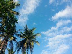 Long time no see #bluesky #sky