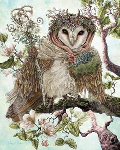 Wise owl. ❣Julianne McPeters❣ no pin limits