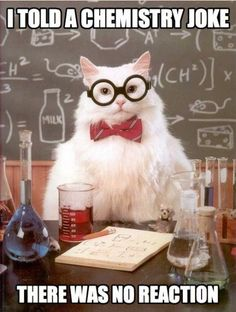 Chemisty Cat