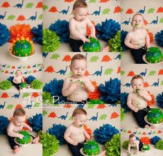 Loved this Dino themed cake smash for Max! #twosisters_photography…