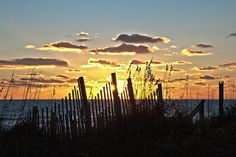 Carey grew up going to the Outer Banks of North Carolina, and she is taking us summer of 2014 to experience a bit of what she enjoyed for many summers.