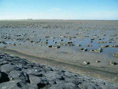 Moddergat, waddenzee, Noord-Nederland