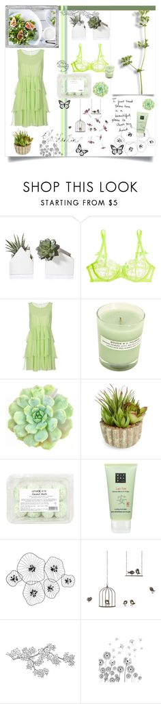 """""""Oh Darling"""" by alongcametwiggy ❤ liked on Polyvore featuring L'Agent By Agent Provocateur, Ermanno Scervino, A.P.C., WALL, Allstate Floral, Rituals, Polaroid, Percival and ferm LIVING"""