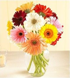 need flowers now :)  Google Image Result for http://www.2flowers.com/arrangements/big/1383.jpg
