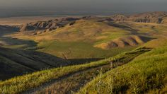 Onward and Upward by Wayne Wong on Capture Kern County // Our Wind Wolves Sunrise to Sunset adventure paused as a flock of sheep were on the road.  After the sheep dog quickly dispatched the sheep, we left this vista for our final pitch up to the place where we would take our sunset shots.