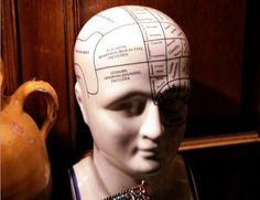 Nine things educators need to know about the brain…absolutely fantastic!