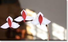 Orchidées tuto Les Origami de Senbazuru pliage de J.Gonzales