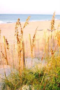 North Topsail Beach, Outer Banks, North Carolina