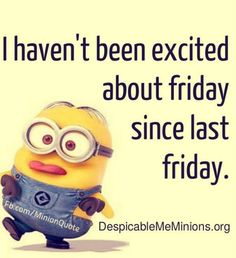 Funny minions quotes 380
