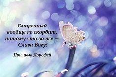 image (525×350)