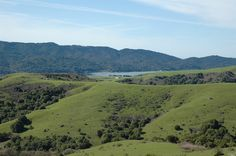 Topography Level,Gently Sloped,Hilly,Rolling, View Bay,Forest/Woods,Hills,Mountain,Panoramic,Pasture,Ridge,Valley,Water, Lease Type Net, Acquire end of the road privacy, serenity and incredible views to Tomales Bay, Inverness, Pt. Reyes and Nicasio on 1,031.9+/- acres in 3 parcels. Cattle grazing currently. Rock outcroppings and numerous ponds. Four generations have enjoyed the ranch. Now you have a chance to create a legacy property, family compound, graze animals, grow crops, ride horses…