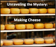 Unraveling the Mystery: Making Cheese