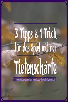 3 Tipps & 1 Trick für geringere Tiefenschärfe in einem Bild Three tips and one trick to reduce the depth of field of a photo