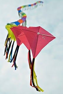 Stunt kite!