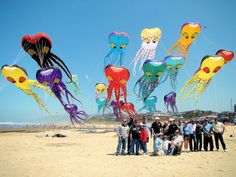 KITES - A QUICK OVERVIEW - Barry Ogletree - Picasa Web Albums