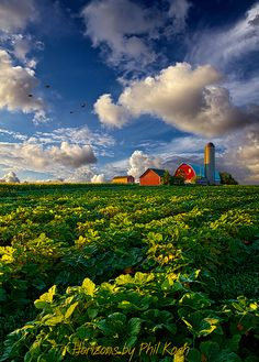 Living Wisconsin | Flickr - Photo Sharing!