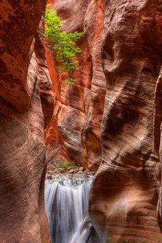 ✯ High on the Canyon Wall - Slot Canyon, Utah