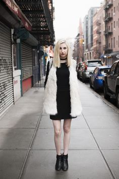 Arctic Fox   Southern New Yorker