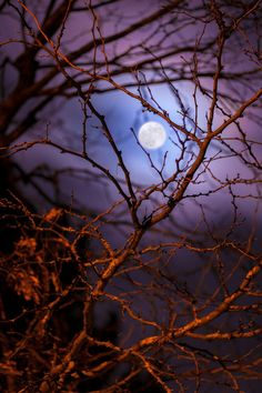 moon, night, and nature image Shoot The Moon, Moon Shadow, Moon Pictures, Pictures Images, Good Night Moon, Ocean Night, Moon Magic, Beautiful Moon, Beautiful Scenery