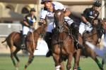 3/8/14 UAE v EDREES Gonzalo Echeverry for Pololine
