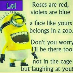 LOLllll via @overstockfrenzy Laugh At Yourself, Red Roses, Minions, Like You, No Worries, Lol, Face, Instagram, The Minions