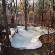 forest skate park