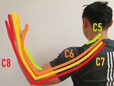 Neck And Shoulder Exercises, Posture Exercises, Neck And Shoulder Pain, Shoulder Workout, Hand Therapy, Massage Therapy, Pinched Nerve In Neck, Shoulder Rehab, Ulnar Nerve