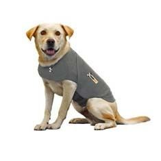 A weighted vest for your anxious pup to wear during thunder storms!  Crazy, but wonderful.
