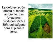 """PPT in PDF format to introduce students to Chico Mends, deforestation and animal extinction. Afterwards, students can further research the topics and present their findings to the class.  Great activity for Earth Day or for an environment unit. You might also be interested in the """"Medio Ambiente"""" bundle:https://www.teacherspayteachers.com/Product/El-medio-ambiente-Bundle-2980656"""