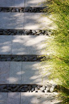 // 62 degrees in San Francisco by Arterra LLP Landscape Architects