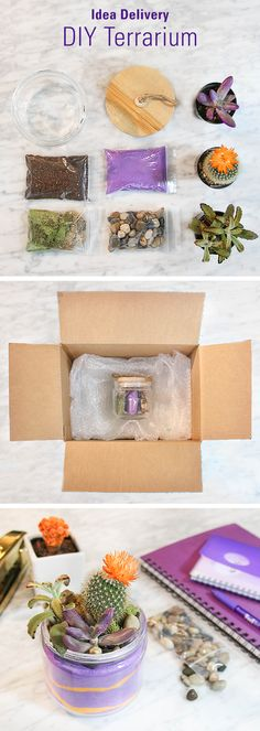 26 best diy packaging inspiration images on pinterest packaging diy terrarium kits make great gifts because they are super creative and easy to make solutioingenieria Gallery