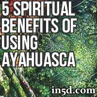 Ayahuasca has a powerful effect on one's spiritual processes and can facilitate healing, awakening, understanding and the development of spiritual wisdom when used in conjunction with spiritual practice and a strong healthy life.