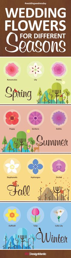 Before you meet with your wedding florist, it's always a smart idea to put together a list of wedding flowers you'll need. Here are different flower options according to different seasons to help you pick the right ones. Wedding Monograms, Monogram Wedding, Daffodils, Tulips, Wedding Themes, Wedding Ideas, Different Seasons, Monogram Design, Different Flowers