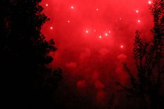 chasingthegreenfaerie:   Fireworks Budapest by MariekevdWilt