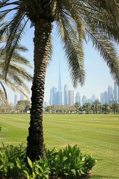 Great photo of Dubai. See it here too http://constancia.net/website/199/index.htm