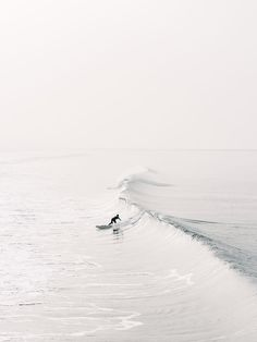Venice Silver | Cereal Magazine For more cool pics check out danteharker.com