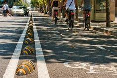 Armadillos help keep cyclists safe from cars. Photo / Cyclehoop.com