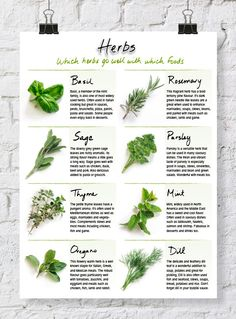 Herb Chart - explains the characteristics and flavor matchups for use