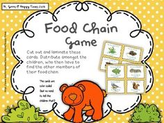 A perfect whole-class game to practice food chains and predator/prey relationships.The file contains 32 cards (8 different food chains). Give a card to each student, who then has to find other members of their food chain.Print and laminate for durability. Food Chain Activities, 2nd Grade Activities, 5th Grade Science, Kindergarten Science, Science Classroom, Activity Games, Teaching Science, Science Activities, Science Ideas