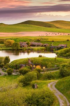 Hobbiton. I love the Shire, so peaceful, so beautiful.