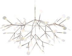 heracleum suspension light - hive modern.com