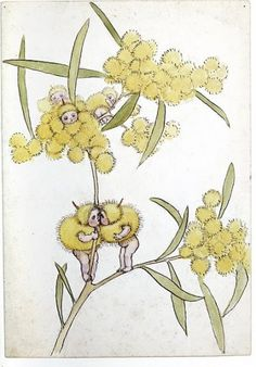 May Gibbs' Wattle Babies. May Gibbs is one of Australia's best loved classic children's book writers and artists. Australian Artists, Baby Tattoos, Botanical Art, Illustration, Botanical Illustration, Drawings, Australian Art, Art, Card Art