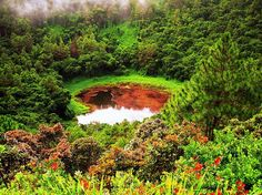 dormant Volcano in Mauritius