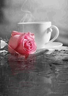 Gifs Bonne St Valentin Page 15 Good Morning Coffee, Good Morning Gif, Good Morning Greetings, Morning Images, Iphone Wallpaper Video, Flower Phone Wallpaper, Rose Wallpaper, Coffee Gif, Coffee Images