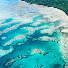 Fact: Fiji's coral reef systems cover 4,000 square kilometres in the South Pacific.  IG'er @bulabrideblog