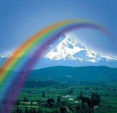 (somewhere over the rainbow . Perhaps the most AWESOME view ever Rainbow Sky, Love Rainbow, Taste The Rainbow, Rainbow Bridge, Over The Rainbow, Rainbow Colors, Rainbow Unicorn, Rainbow Connection, Rainbow Aesthetic
